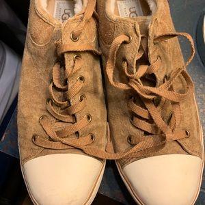 UGG Evera Tan Suede Sneakers